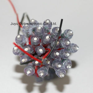 9mm/Red 5V/12V Outdoor Advertising LED Light String Pixel for Signboard pictures & photos