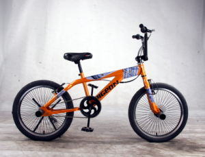 """20"""" Freestyle Bicycles Performance Bikes (FP-FSB-H019) pictures & photos"""