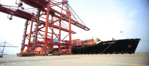 Oocl Ocean Freight Service From Ningbo to Greece