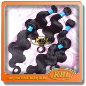 Beautiful Brazilian Human Hair Weft pictures & photos
