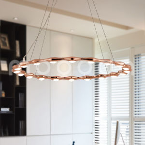 Modern Rose Gold Round Ring Aluminium Pendant Lamp for Living Room pictures & photos