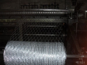 Galvanized Hexagonal Poultry Wire Fencing Netting pictures & photos