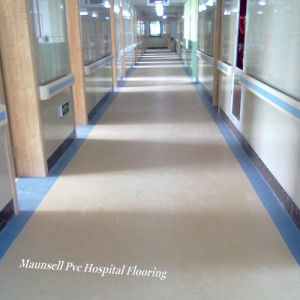 Professional Homogeneous PVC Medical and Laboratories Floor with 3mm pictures & photos