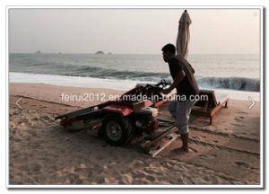 Walk Behind Beach Cleaner pictures & photos