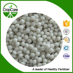 Fertilizer Monopotassium Phosphate MKP 0-52-34 99% pictures & photos