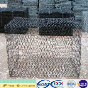 Galfan/Hot Dipped Galvanized/PVC/PE Coated Gabion Mesh (XA-GM15) pictures & photos