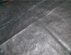 Woven Needle Punched Ground Cover