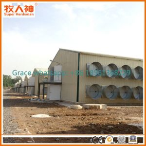 Steel Structure Chicken House Construction From Factory with Housing Equipment pictures & photos
