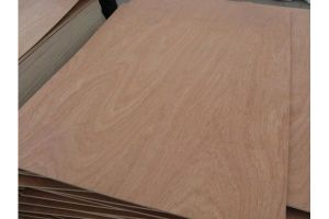 Bitangor Plywood for Furniture and Construction Use