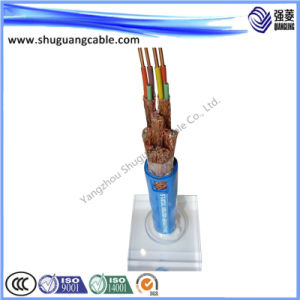 Low Smoke/Halogen Free/PE Insulated/Fully Screened/PE Sheathed/Computer Cable pictures & photos