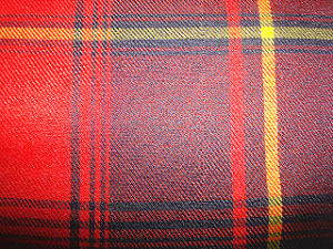 Polyester Yarn Dyed Check Fabric pictures & photos