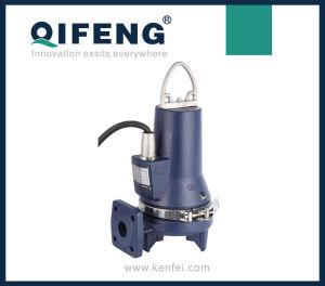 WQAS (D) Heavy Duty Submersible Sewage Grinder Pump pictures & photos