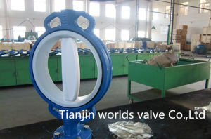 PTFE Coated Wafer Control Valve (D71X-10/16) pictures & photos