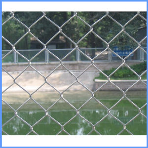 Diamond Shape Galvanized/PVC Coated Wire Fence pictures & photos