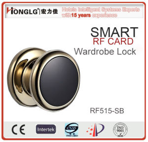 Optional Color China Manufacturer Locker Lock (RF515) pictures & photos