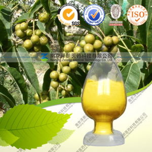 High Quality 97% Berberine Hydrochloride pictures & photos