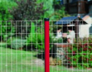 Euro Fence in PVC Coated Different Color pictures & photos