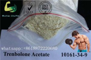 Cutting Cycle Hormone Testosterone Acetate Raw Steroid Powders for Muscle Growth
