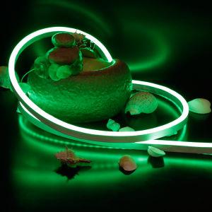 RGB LED Neon Flex Light for Building Outline Decoration pictures & photos