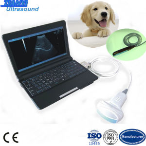 Favorites Compare High Quality Mini Laptop Full Digital Ultrasound Scanner pictures & photos