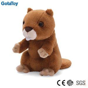 Custom Plush Stuffed Soft Marmotte Animal Toys pictures & photos