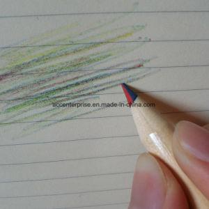 Different Color Lead Pencil pictures & photos