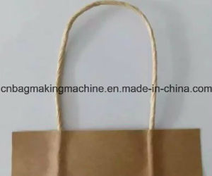 Automatic Paper Flat Belt Bag Handle Making Machine (ZSW-B) pictures & photos