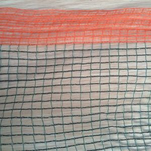 Anti-Hail Net for Protecting Plants and Fruits pictures & photos