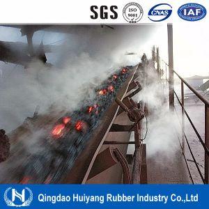 Hr350 Degree High Temperature Resistant Conveyor Belt pictures & photos
