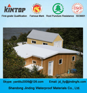Exposed PVC Waterproof Membrane Used on Roof pictures & photos