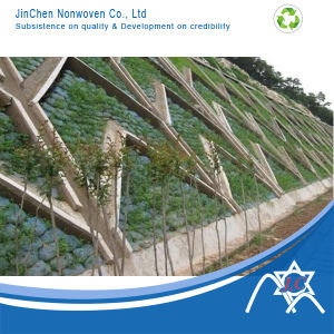 PP Nonwoven for Soil Protect Landscaping pictures & photos