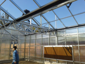 Easy Assemble PC Sheet Greenhouse Low Cost Agricultural Greenhouse pictures & photos