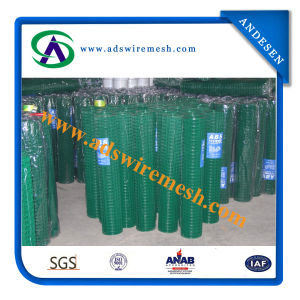"0.8mm/1.1mm *1/2"" Green PVC Welded Wire Mesh pictures & photos"