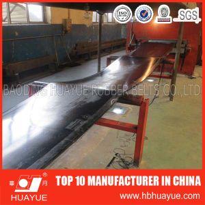 Fabric Reinforced Nylon Rubber Conveyor Belt (B400-2200) pictures & photos