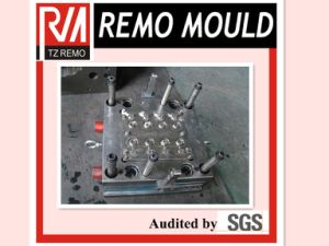 Plastic Cap Mould with Hot Runner System pictures & photos