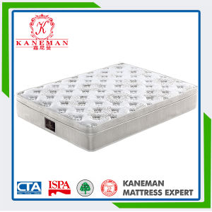 Compressed Pocket Spring Mattress for Us Market pictures & photos
