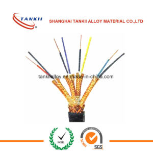 Insulated Resistance Nichrome Wire with fibreglass 600C/800C pictures & photos