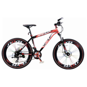High Quality New Mountain Bike (MTB-002) pictures & photos