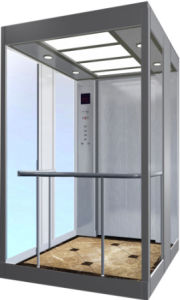 Guangdong FUJI Villa Panoraic Elevator