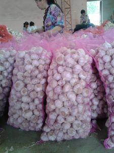 2014 New Crop Normal White Garlic pictures & photos