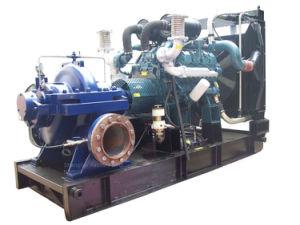 Double Suction Centrifugal Pump (TPOW) pictures & photos