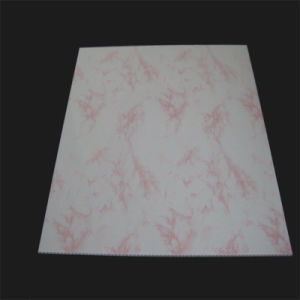 China Haining Chenxiang Good Quality Plastic Ceiling Panel