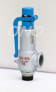Spring Low Lift Male Thread Wcb Safety Valve with Spanner pictures & photos