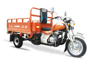 Tricycle Gw150zh-F1 (1) pictures & photos