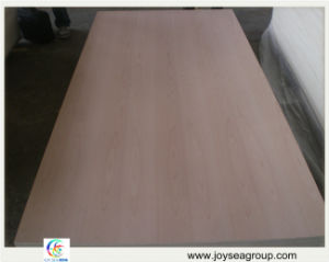 9mm 12mm 15mm 18mm Beech Fancy Plywood Price pictures & photos