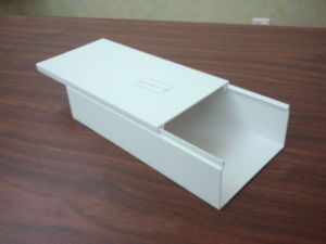 HDL-100x50 Wire Trunking
