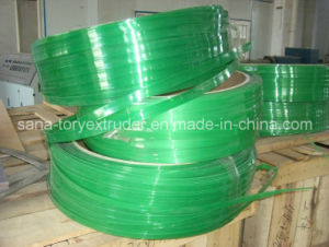 Plastic Machine PET Strappingt Band Extrusion Production Line (ST-90) pictures & photos