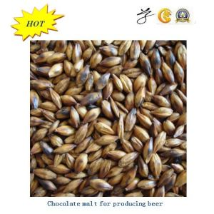 Color Barley Malt for Beer pictures & photos