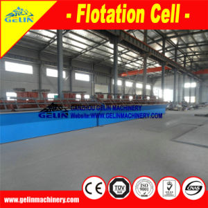Coltan Mine Flotation Machine Flotation Tailings pictures & photos