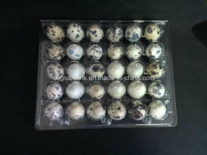 Clamshell Blister Plastic Egg Packer Quail Egg Tray 6 Holes pictures & photos